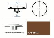 TX25 Abdeckkappe RAL8007 / rehlbraun  (10 Stk.)
