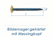 2 x 40mm Bildernagel gehärtet mit Messingkopf (10 Stk.)