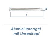 4,5 x 80mm Aluminiumnägel Linsenkopf  (10 Stk.)