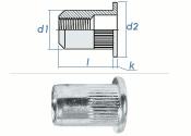 M10 x 12,9 x 22mm Blindnietmutter Flachkopf AlMg5 (10 Stk.)