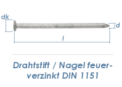 2 x 40mm Drahtstifte feuerverzinkt (2,5kg Paket)