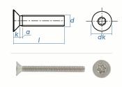 M3 x 10mm Senkschrauben TX ISO14581 Edelstahl A2  (100 Stk.)